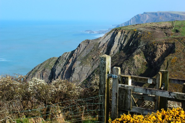 Welcombe and beyond, the South West Coast Path